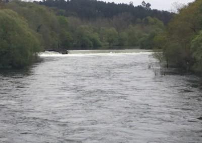 Estado del río Ulla