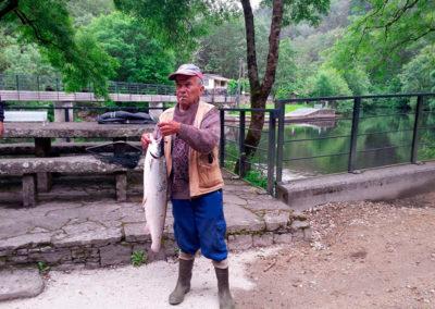 Salmon Mandeo