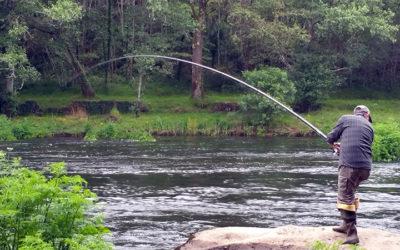 Solicitudes pesca fluvial Galicia 2018