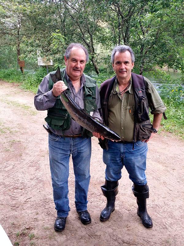 Isidro Pérez Sierra, de Santander y residente en Burgos, saca un salmón de 4,800 kg a cucharilla en el puesto de Venezuela, coto de Ximonde.