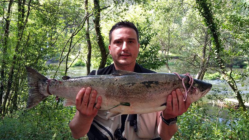 Edmundo Castro Sabugueiro, de Santiago de Compostela, saca un salmón de 4,700 kg, en el puesto de O Bote a cucharilla.