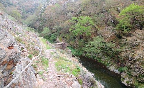Capturas río Esva