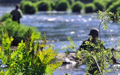 Normativa de pesca fluvial de Galicia 2018