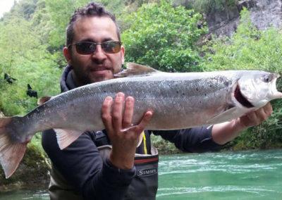 Carlos Torres, salmón Cares