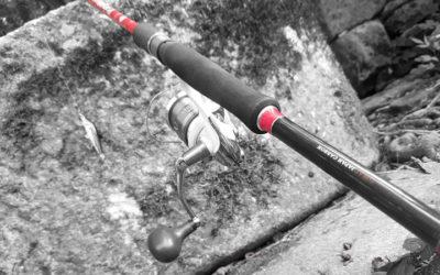 Finaliza la temporada de pesca del salmón en los ríos de Galicia