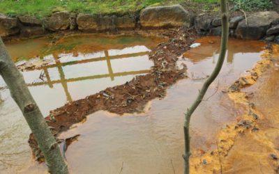 Inspeccionan las aguas a su paso por la mina de Touro