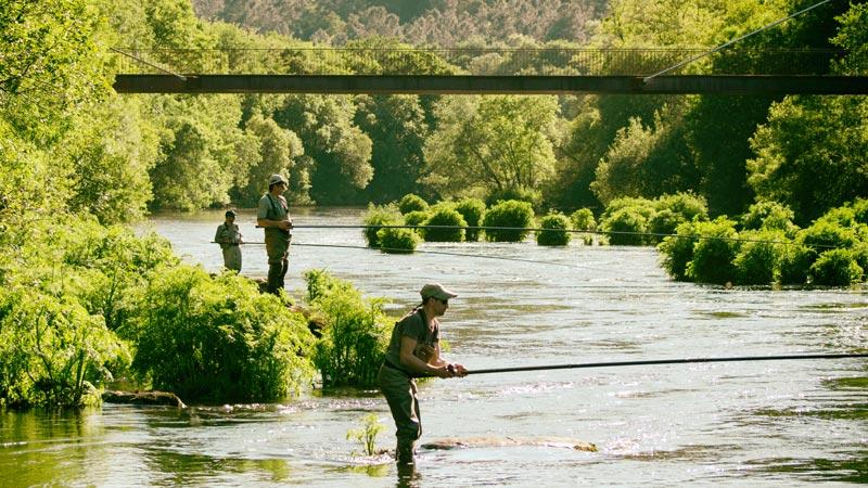 Concurso internacional del salmón 2021